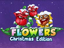 Сорвите куш в сказочном онлайн-слоте Flowers: Christmas Edition