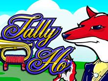 Выигрывайте реальные деньги в онлайн-слоте Tally Ho
